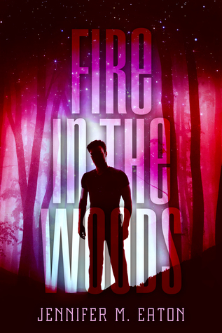 Fire in the Woods (Fire in the Woods, #1)
