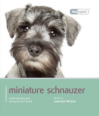 miniature-schnauzer-miniature-schnauzer-dog-expert