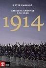 Stridens skönhet och sorg 1914 : första världskrigets inledande år i 68 korta kapitel