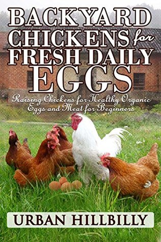 Backyard Chickens For Fresh Daily Eggs Raising Chickens For Healthy