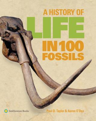 a-history-of-life-in-100-fossils