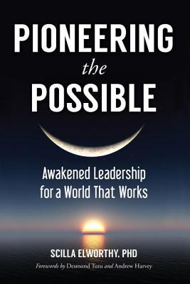 pioneering-the-possible-awakened-leadership-for-a-world-that-works