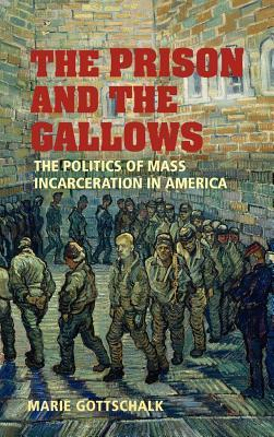 The Prison and the Gallows: Politics of Mass Incarceration in America (Cambridge Studies in Criminology)