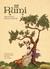 Sufi Comics - Rumi by Mohammed Ali Vakil