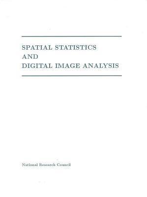 Spatial Statistics and Digital Image Analysis