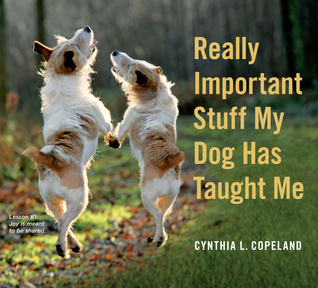 Really Important Stuff My Dog Has Taught Me