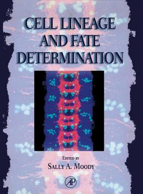 Cell Lineage and Fate Determination
