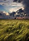 Harvest by Andrej Poleev