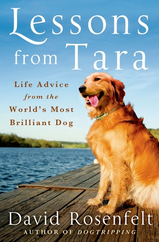 Lessons from tara life advice from the worlds most brilliant dog 23014747 fandeluxe Image collections