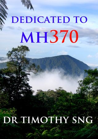 Dedicated to MH370