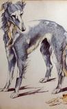 Epitafio de una perra de caza