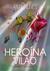 A Heroína e o Vilão
