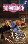 Shining's Orphan (Thoroughbred, #12)