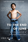 Download To the End of June: The Intimate Life of American Foster Care