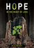Hope in the Midst of Loss by Beth Weikel