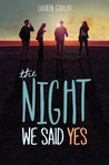 The Night We Said Yes (The Night We Said Yes, #1)