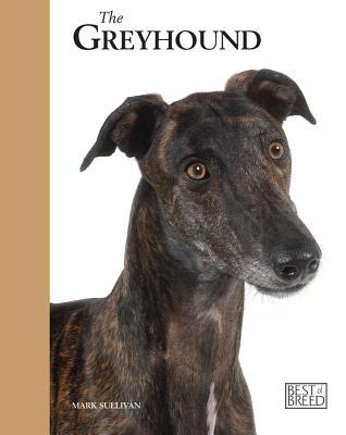 The Retired Racing Greyhound: Pet Book