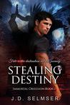 Stealing Destiny by J.D. Selmser
