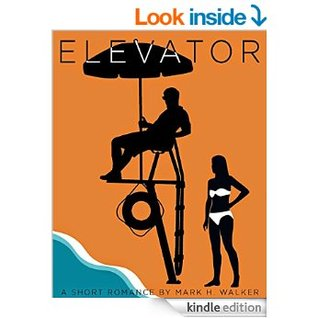 the elevator a short story This is a quiz to test the knowledge level of short story elements: character, conflict, narrator, plot and setting as well as the elevator by william sleator.