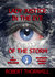 Lady Justice in the Eye of the Storm (Lady Justice, #18)