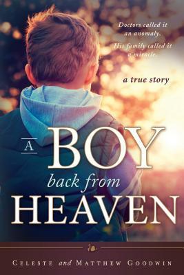 A Boy Back from Heaven