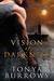 Vision of Darkness (D.I.E. Squadron, #1)