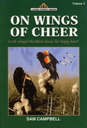 On Wings of Cheer