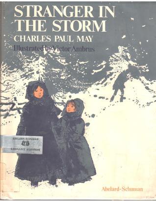 Stranger in the Storm