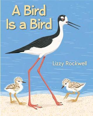 a-bird-is-a-bird