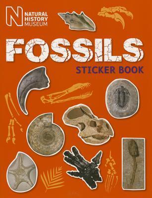Fossils Sticker Book
