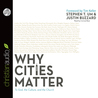 Why Cities Matter by Stephen T. Um