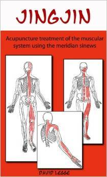 jing-jin-acupuncture-treatment-of-the-muscular-system-using-the-meridian-sinews