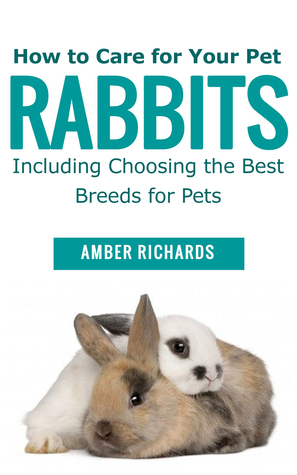how to care for your pet rabbits including choosing the