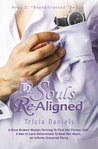 Souls ReAligned (Bound4Ireland, #2)