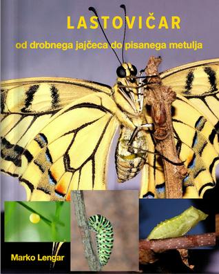 Lastovičar od drobnega jajčeca do pisanega metulja by Marko Lengar