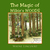 The Magic of Wilkie's Woods