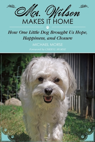 mr-wilson-makes-it-home-how-one-little-dog-brought-us-hope-happiness-and-closure
