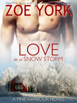 Love in a Snow Storm by Zoe York