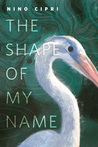 The Shape of My Name cover