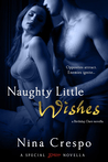 Naughty Little Wishes (Birthday Dare, #2)