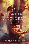 A Beautiful Accident cover