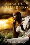 A Beautiful Wilderness by Dupe Olorunjo
