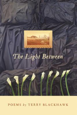 The Light Between by Terry Blackhawk
