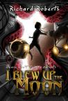 Please Don't Tell My Parents I Blew Up The Moon by Richard  Roberts