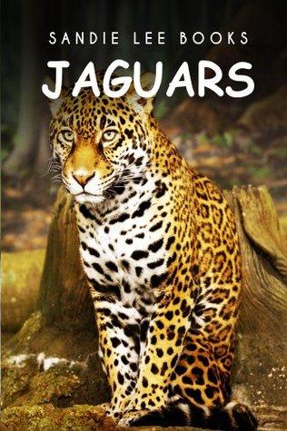 Jaguars - Sandie Lee Books (children's animal books age 4-6, wildlife photography, animal books nonfiction)