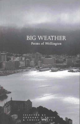 Big Weather: Poems of Wellington