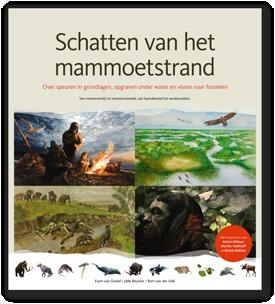 Schatten van het Mammoetstrand: over speuren in grondlagen, opgraven onder water en vissen naar fossielen; van mammoetdij tot mensenschedel, van hyenakeutel tot woelmuiskies