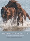 Wild Horses of the Atlantic Coast: An Intimate Portrait