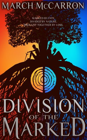 division-of-the-marked