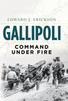 Gallipoli: Command Under Fire